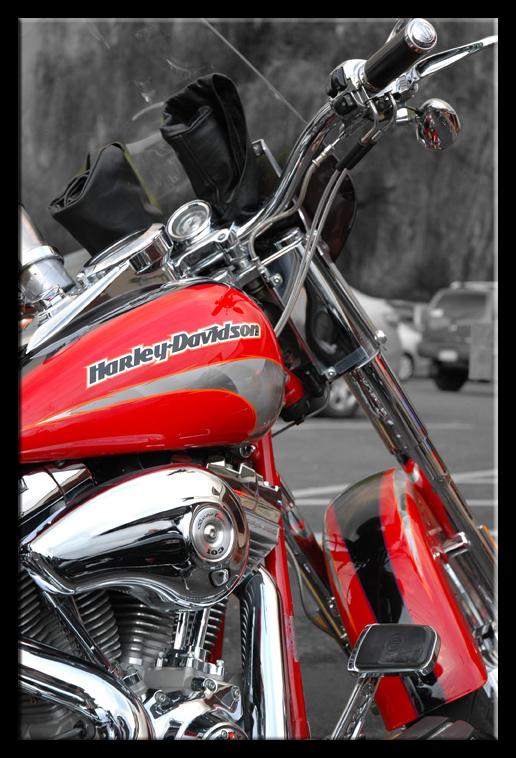 Murph's Bike
